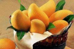 芒果是热性的还是凉性的?虽是热带水果之王(却属凉性)