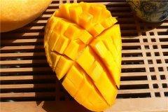 世界上最大的芒果有多少斤 比成年人头更大(重超8斤)