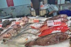 澳大利亚美食介绍:海鲜泛滥的澳大利亚去哪吃(海鲜篇)