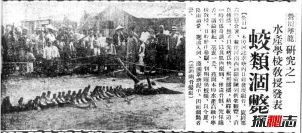 1934年辽宁营口坠龙事件是真的吗,龙骨证据竟被日本人盗走