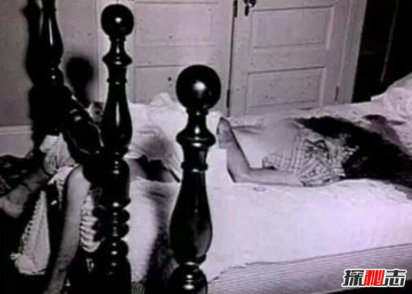 hallokitty藏尸案电影图片