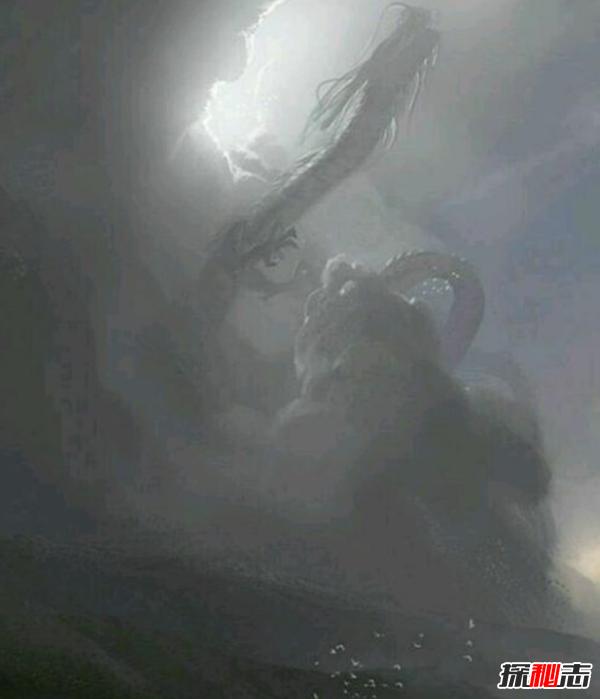 上古十大祖龙是哪十大?起源天龙执掌天道(真实图片揭晓)