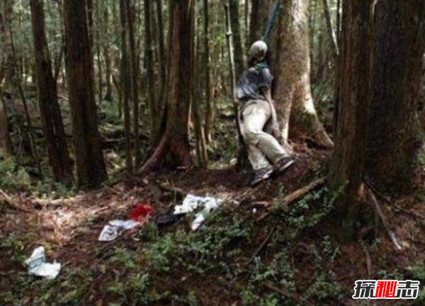 富士山下为什么恐怖?自杀死亡人数成百上千