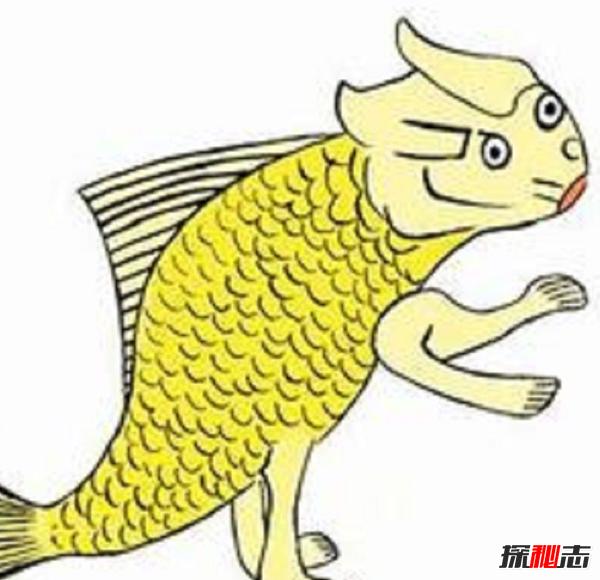 山海经横公鱼什么样子,横公鱼真实图片揭晓(夜化为人)