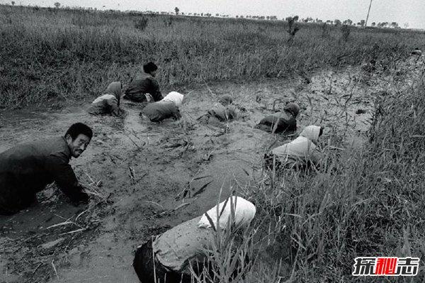1998年黄河怪事蛇女,包工头杀掉白蛇工人全部自杀