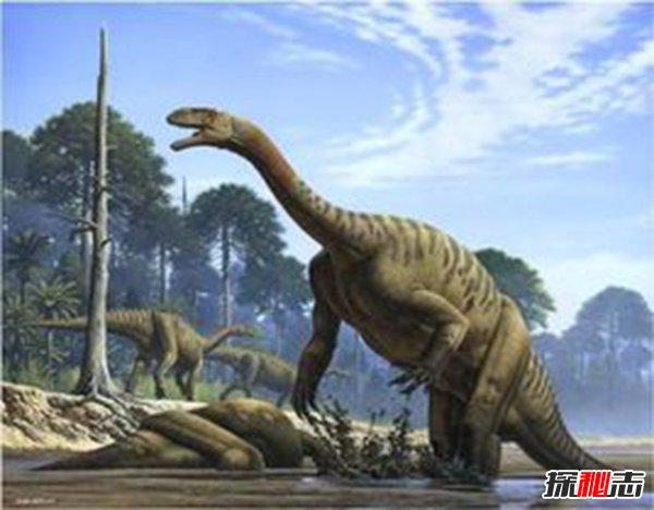 板龙是属于早期恐龙族群之一, 是三叠纪唯一最常出现在孩子恐龙