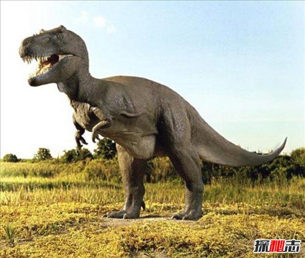 恐象vs霸王龙谁厉害,肉食性霸王龙更胜一筹