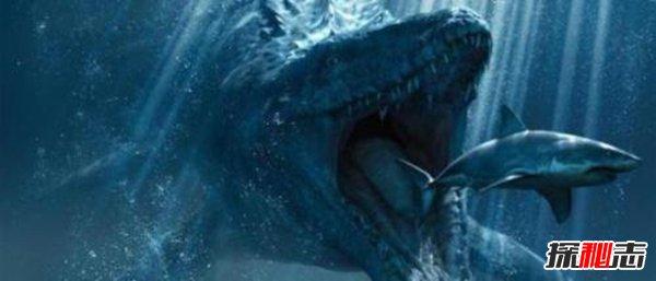 海洋十大霸主排名,第一名沧龙是海洋里无敌的存在
