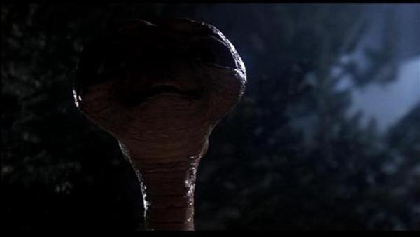 外星人来过地球视频图片