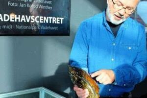 世界上最大的牡蛎,丹麦巨型牡蛎(长35.5厘米重2公斤)