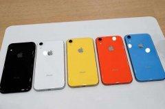 苹果iPhone11有几种有颜色?哪一种颜色最好看最受欢迎