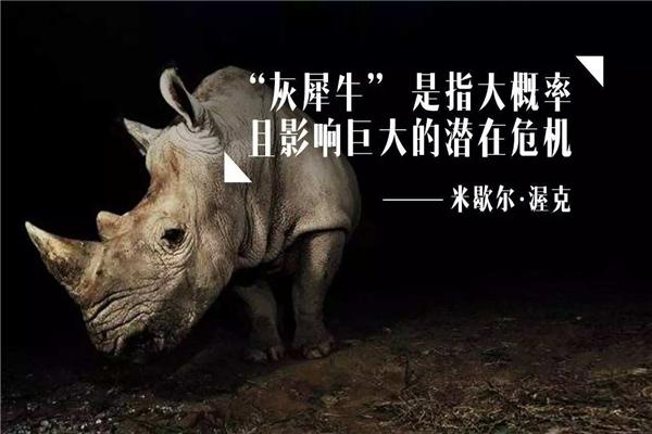 灰犀牛事件的案例图片