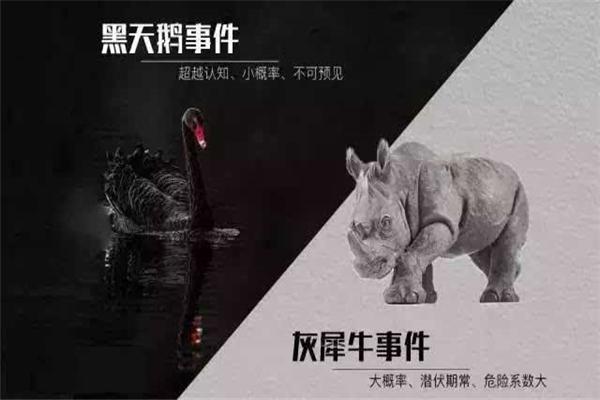 灰犀牛事件是指什么图片
