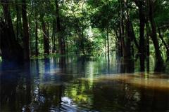亚马逊河地下暗河,面积堪比一整个国家