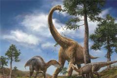 腕龙的天敌是什么恐龙 草食性恐龙天敌特别多