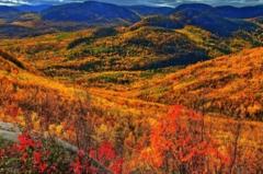 世界上最低的高原:劳伦琴低高原(中国最低是内蒙古高原)
