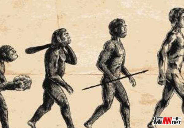 人类还会进化吗?人类进化的十大功能优势