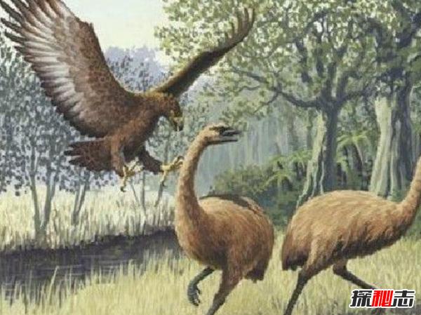 地球还存在史前生物吗?世界十大无害的史前生物
