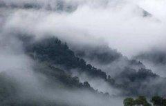 雾霾和雾的区别 雾霾含有毒素可能引起疾病