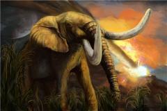 猛 象VS非洲象體型(xing)誰(shui)更大?史前猛 象略勝一籌(chou)(達7噸)