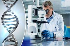 世界上第一個人造生命(ming)︰辛西婭(ya) 從化學物質中提取基因(yin)