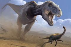 白垩纪十大最强恐龙:第一最长14.7米(拥有20万牛咬力)