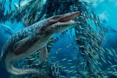 沧龙的祖先是什么动物?不足1米的蜥蜴被迫下水成霸主
