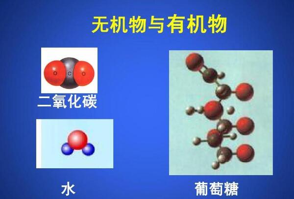 炭素 有機物 二酸化