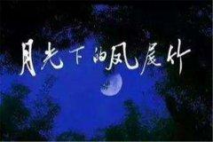 月光下的凤尾竹葫芦丝 施光南先生创造的傣族乐曲