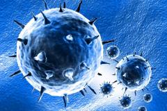 病毒是生命吗?非细胞生命形态(核酸长链蛋白质外壳组成)