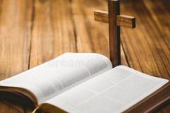 科学证明圣经是真实的?内容不确定,诺亚方舟(4千米海拔)