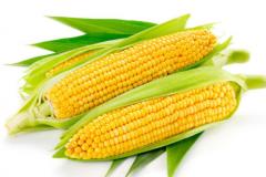 中国四大农作物是什么?(水稻、小麦、玉米、大豆等)