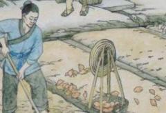 小农经济的特点是什么:个体农民经济(以家庭为单位)
