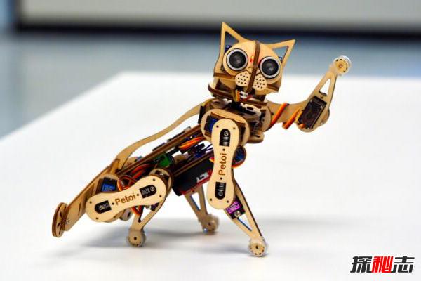 世界上最快的机器猫:Nybble,身高仅14厘米(能跑能跳)