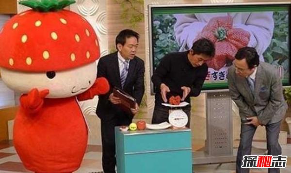 世界上最大的草莓:长相奇丑无比(重达250克)