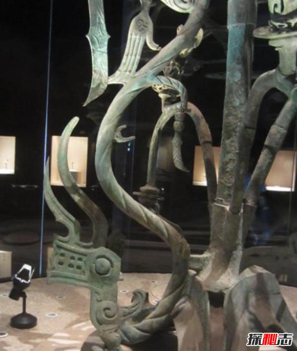 青铜神树的秘密揭秘:青铜神树为什么逆天?