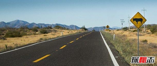 世界上最危险的十大公路,智利罗斯卡拉高莱斯路排名第一