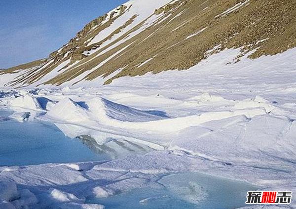 世界上最大的无人岛屿:没人敢住最低温零下50度(极似火星)
