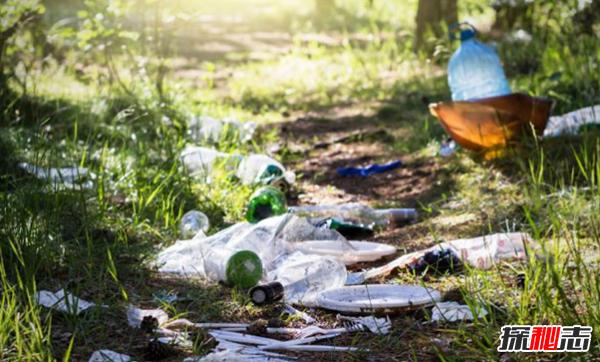 关于乱丢垃圾的危害:数百万动物死亡的罪魁祸首