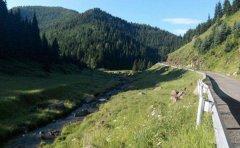 汾河的源头在哪里 它在宁武县东寨镇附近山脉