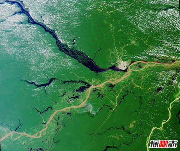 世界上最大的盆地有哪些?世界十大盆地排行