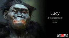 智人灭绝了多少物种?90%的物种被智人所灭绝(包括其他人种)