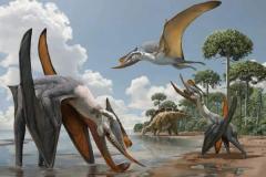 翼龙什么时候出现?最早可追溯到2.2亿年前(三叠纪末期)