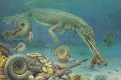 土伦阶灭绝事件:海洋缺氧证据确凿(沧龙科发展壮大)