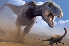 暴龙超科的恐龙有哪些?多达数十种(霸王龙最强)