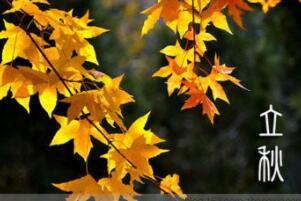 立秋节气的含义是什么,秋天来了(每年的8月7-9日)