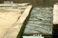 石古湾村龙王井之谜:龙宫洞影响,中央专家考察(自然奇观)