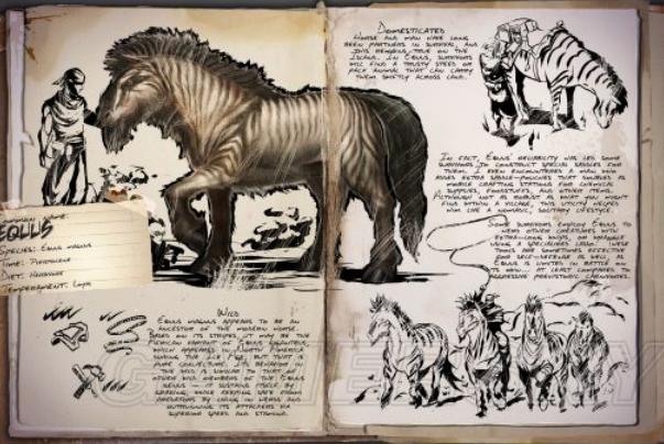 史前最大的马:庞马