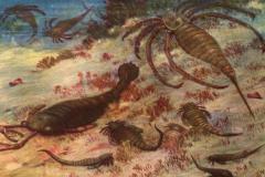 远古最大的蜘蛛:古老海蝎,长1.7米(4.6亿年前海洋巨人)