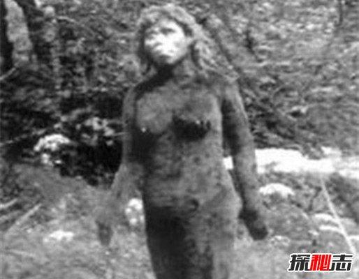 世界五大野人之谜,神秘大脚怪竟是人为造假或野外熊类
